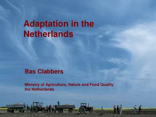 Adaptation in the Netherlands
