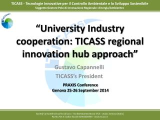 """University Industry cooperation: TICASS regional innovation hub approach"""