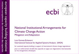 National Institutional Arrangements for Climate Change Action Mitigation and Adaptation