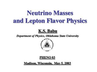 Neutrino Masses  and Lepton Flavor Physics