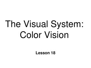 The Visual System: Color Vision