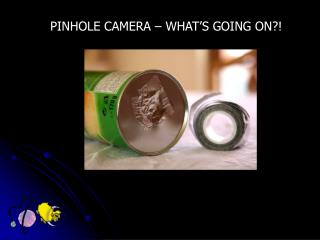 PINHOLE CAMERA – WHAT'S GOING ON?!