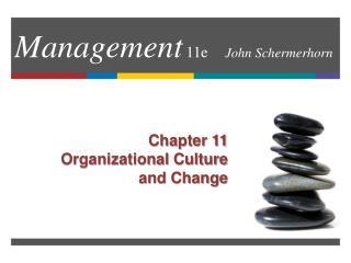 Management 11e  John Schermerhorn