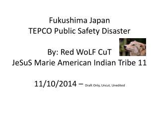 Fukushima Japan  TEPCO Public Safety Disaster