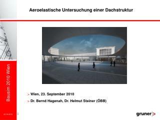 Aeroelastische Untersuchung einer Dachstruktur