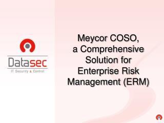 Meycor COSO , a Comprehensive Solution for  Enterprise Risk Management ( ERM )