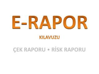 E-RAPOR KILAVUZU