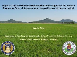 Origin of the Late Miocene-Pliocene alkali mafic magmas in the western