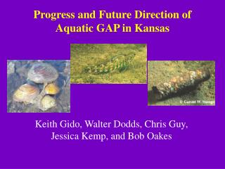 Progress and Future Direction of Aquatic GAP in Kansas