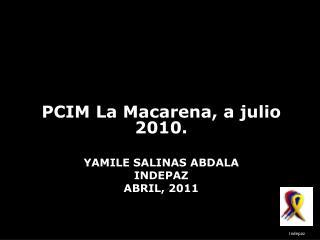 Yamile  Salinas Abdala indepaz ABRIL, 2011