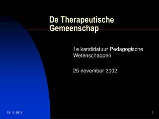 De Therapeutische Gemeenschap