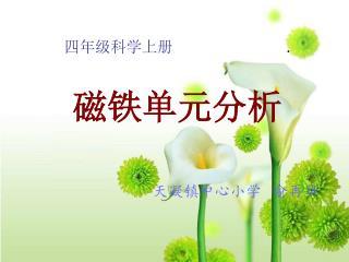 四年级科学上册 .    磁铁单元分析 天凝镇中心小学   俞再华