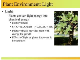 Plant Environment: Light