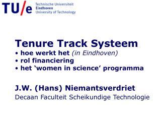 Tenure Track Systeem  hoe werkt het  (in Eindhoven)  rol financiering