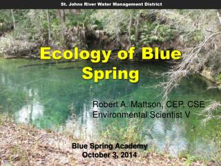 Ecology of Blue  Spring