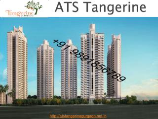 Looking For 3BHK Apt's - ATS Tangerine Sector 99A Gurgaon