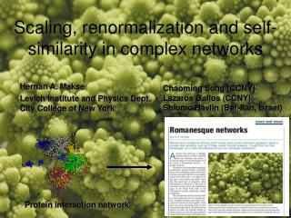 Scaling, renormalization and self-similarity in complex networks