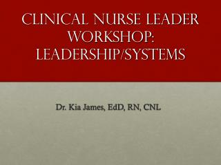 Clinical Nurse Leader Workshop:  Leadership/Systems