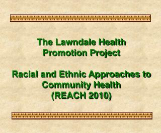The Lawndale Health Promotion Project  Racial and Ethnic Approaches to Community Health  REACH 2010