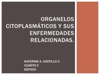 ORGANELOS CITOPLASMÁTICOS Y SUS ENFERMEDADES RELACIONADAS.