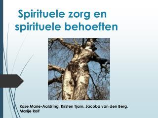 Spirituele  zorg en spirituele behoeften