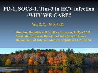 PD-1, SOCS-1, Tim-3 in HCV infection -WHY WE CARE?