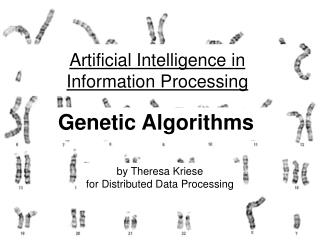 Artificial Intelligence in Information Processing