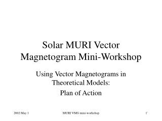 Solar MURI Vector Magnetogram Mini-Workshop