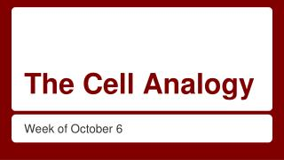The Cell Analogy
