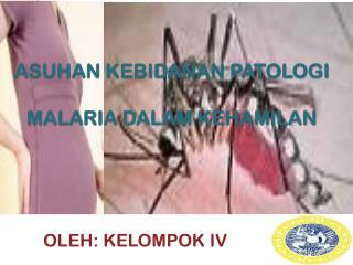ASUHAN KEBIDANAN PATOLOGI MALARIA DALAM KEHAMILAN