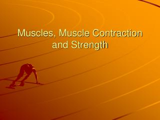 Muscles, Muscle Contraction and Strength