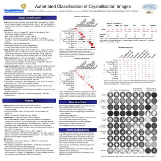 Automated Classification of Crystallization Images