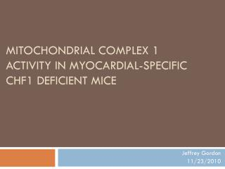 MITOCHONDRIAL COMPLEX 1 ACTIVITY IN MYOCARDIAL-SPECIFIC CHF1 DEFICIENT MICE