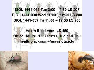 BIOL 1441-033 Tue 3:00 – 4:50 LS 207 BIOL 1441-030 Wed 11:00 – 12:50 LS 200