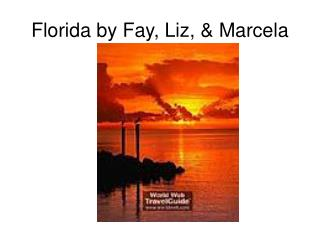 Florida by Fay, Liz,  Marcela