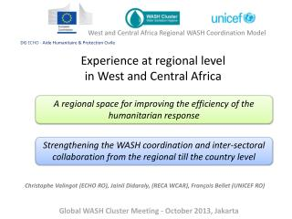Experience at regional level in West and Central Africa