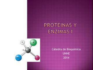 Proteínas y enzimas i