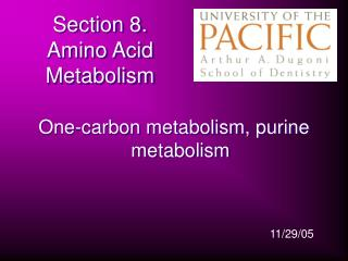 Section 8.   Amino Acid Metabolism