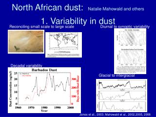 1. Variability in dust