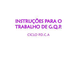 INSTRUÇÕES PARA O TRABALHO DE G.Q.P.