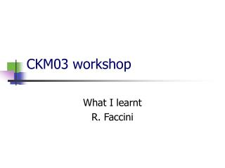 CKM03 workshop
