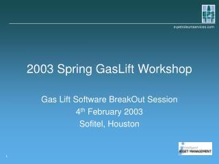 2003 Spring GasLift Workshop
