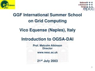 GGF International Summer School on Grid Computing Vico Equense (Naples), Italy