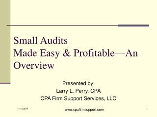 Small Audits Made Easy & Profitable—An Overview