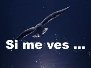 Si me ves ...