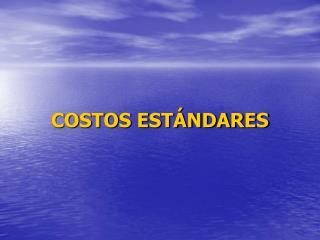 COSTOS ESTÁNDARES