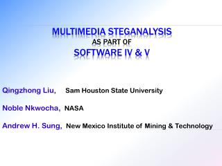 Multimedia  Steganalysis as Part of Software IV & V