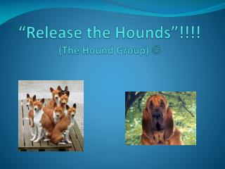 �Release the Hounds�!!!! (The Hound Group)  ?