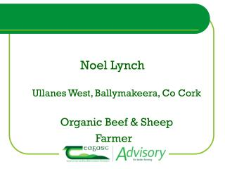 Noel Lynch Ullanes West, Ballymakeera, Co Cork Organic Beef & Sheep  Farmer