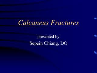 Calcaneus Fractures